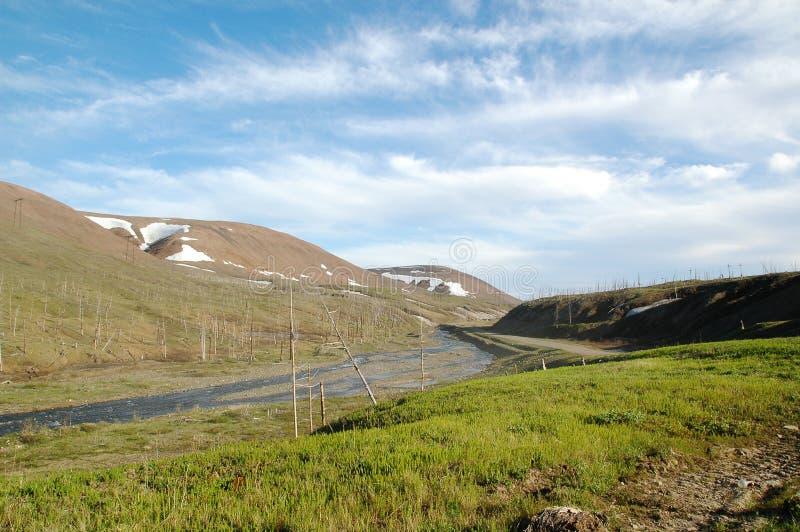 Mola na tundra (Sibiria norte) fotos de stock royalty free