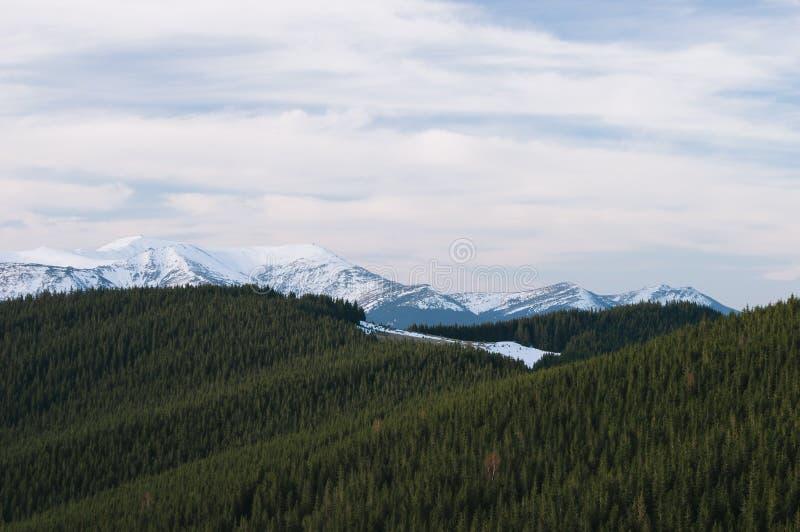 Mola nas montanhas imagens de stock