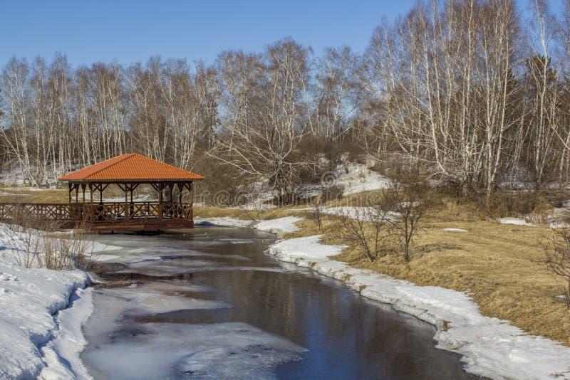Mola a neve derrete na floresta e o rio thawed Paisagem da mola da floresta Mandril pelo rio na floresta imagem de stock royalty free