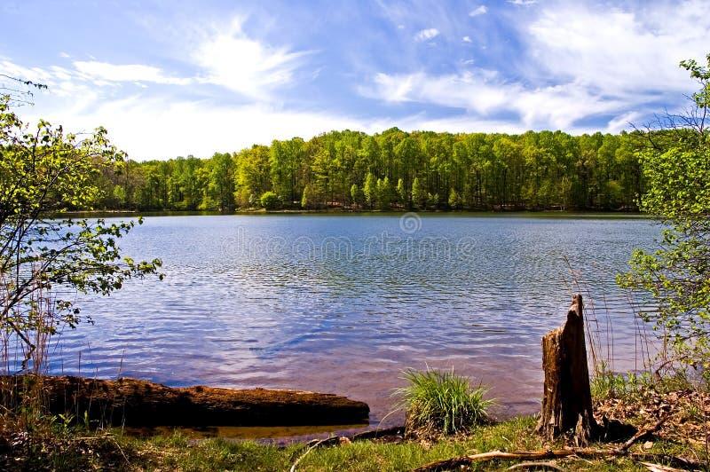 Mola no lago fotografia de stock royalty free