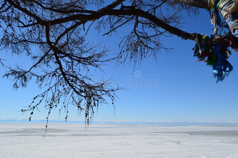 Mola no Lago Baikal em Sibéria fotos de stock