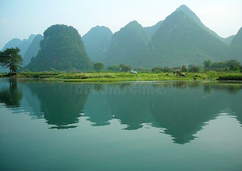 Mola no rio do lijiang fotografia de stock royalty free