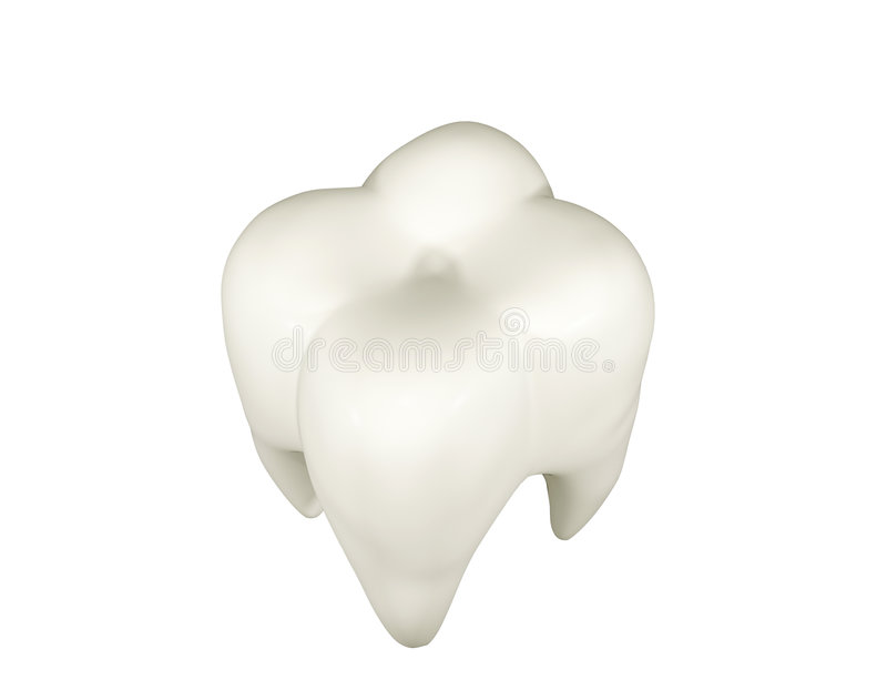 Download Molar stock illustration. Image of dentistry, clipping - 513240
