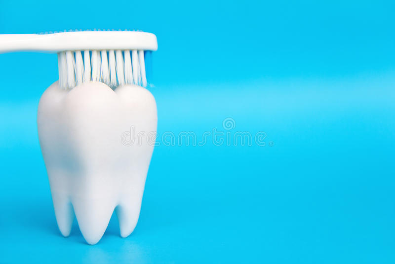 Molar With Brush