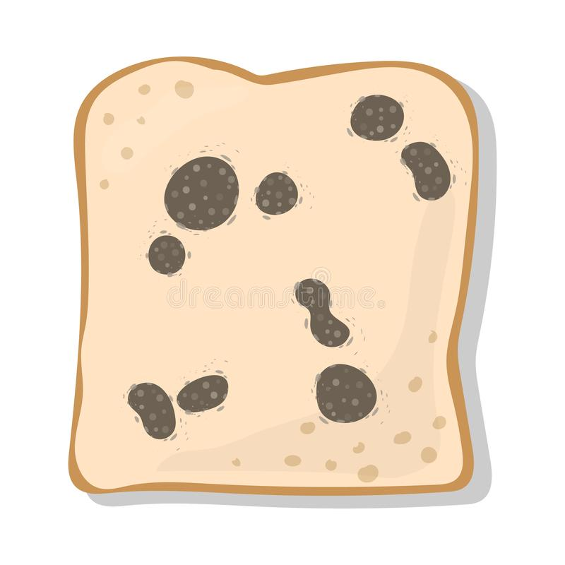Mold on Bread Gray. Gray mold on bread vector on white background royalty free illustration