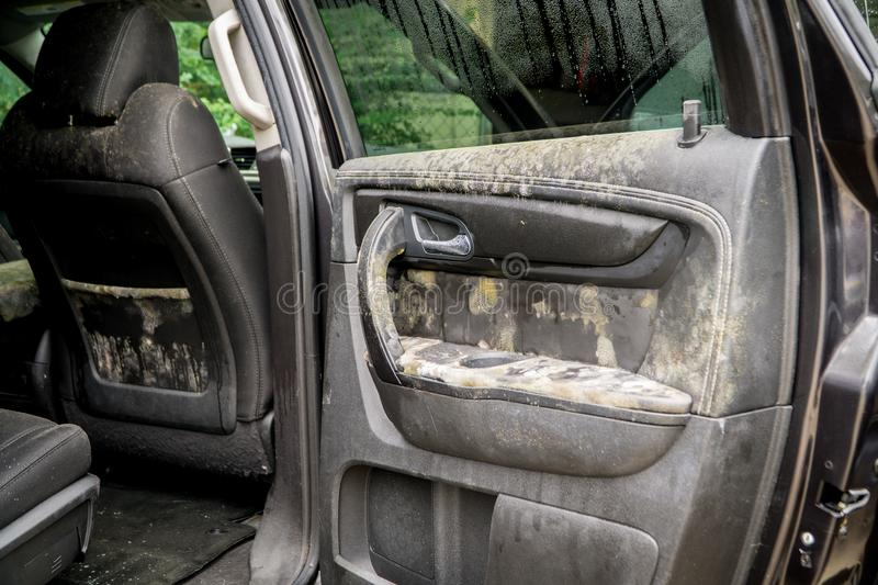 How To Mold Out Of The Inside Of A Car >> Mold Growing Inside A Flooded Car After Hurricane Harvey Stock Photo