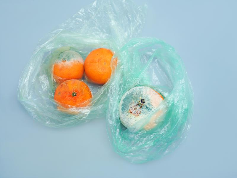 Mold on the fruit stock photography