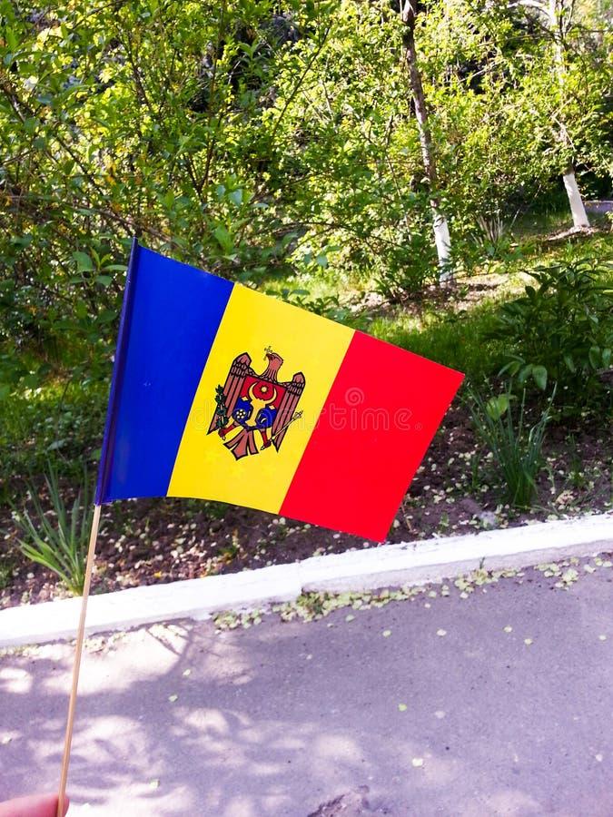 Moldavien flagga royaltyfri foto