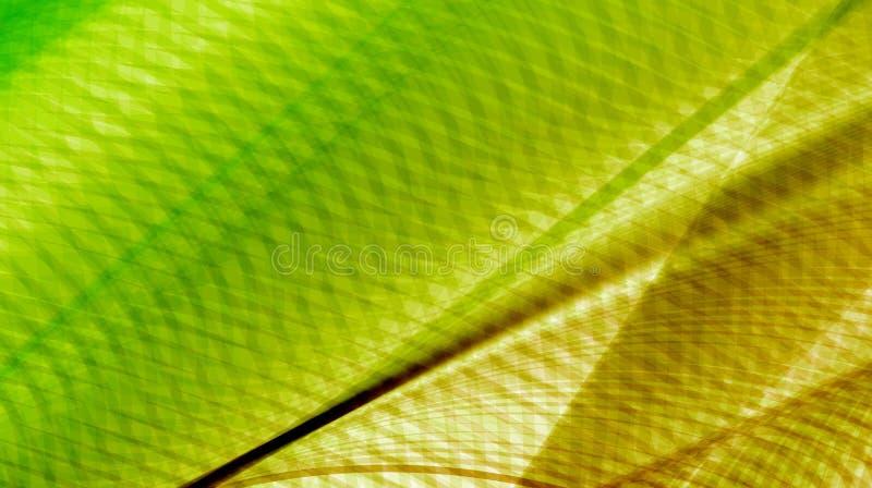 Molde abstrato verde dourado do fundo ilustração do vetor