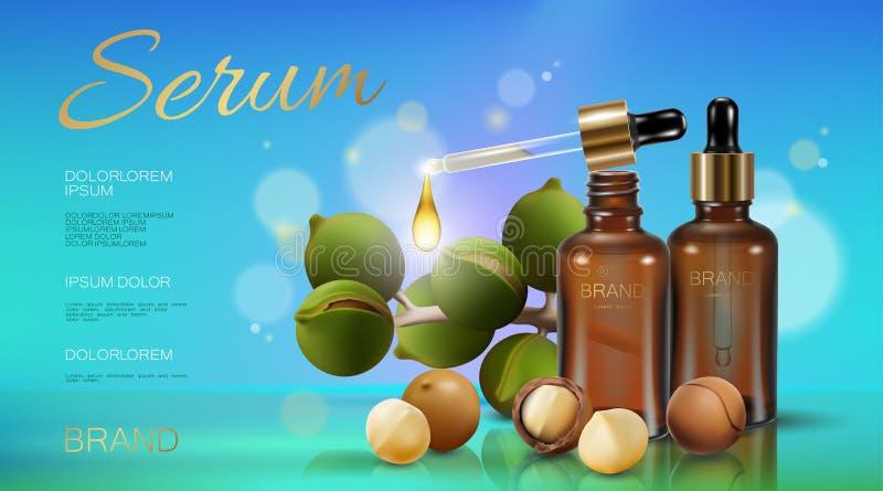 Molde cosmético realístico do anúncio do óleo de porca da macadâmia 3d Luz - soro de vidro transparente da pipeta da garrafa da e ilustração stock