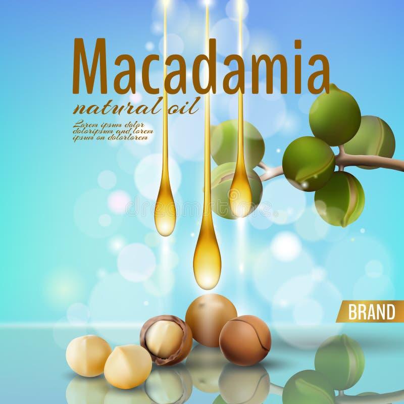 Molde cosmético realístico do anúncio do shell do óleo de porca da macadâmia 3d O ramo sae da casca de noz Cuidado ensolarado da  ilustração royalty free