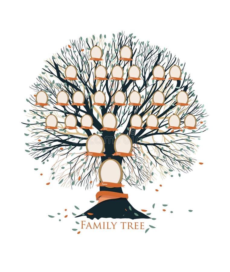 Molde da carta da árvore genealógica, da pedigree ou da ascendência com ramos, folhas, quadros vazios da foto isolados no fundo b ilustração royalty free