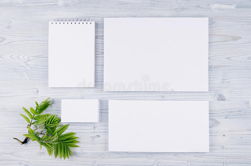 Molde da identidade corporativa, artigos de papelaria com folha verde na luz suave - placa de madeira azul imagens de stock royalty free