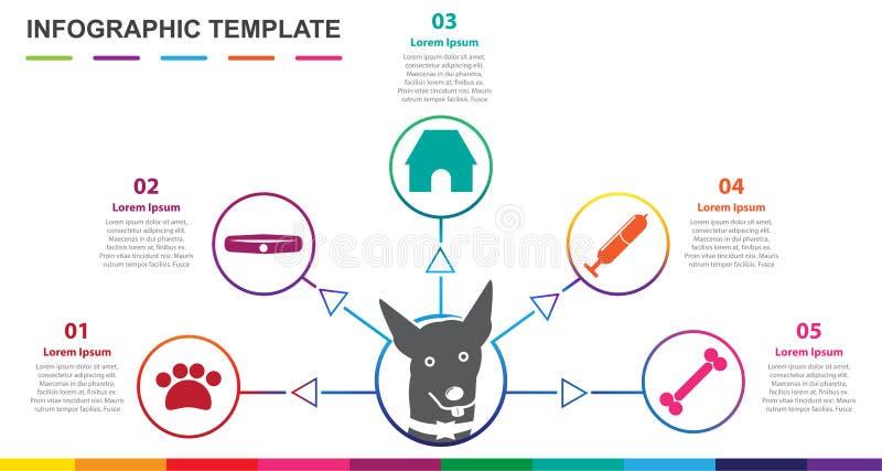 Molde de Infographic para o animal de estimação diagrama de Mindmap de 5 etapas ilustração royalty free