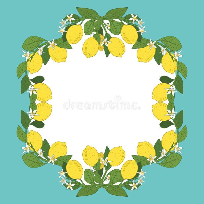 Molde do cartão com texto Quadro tropical dos frutos do limão do citrino no fundo do azul de turquesa do vintage ilustração do vetor