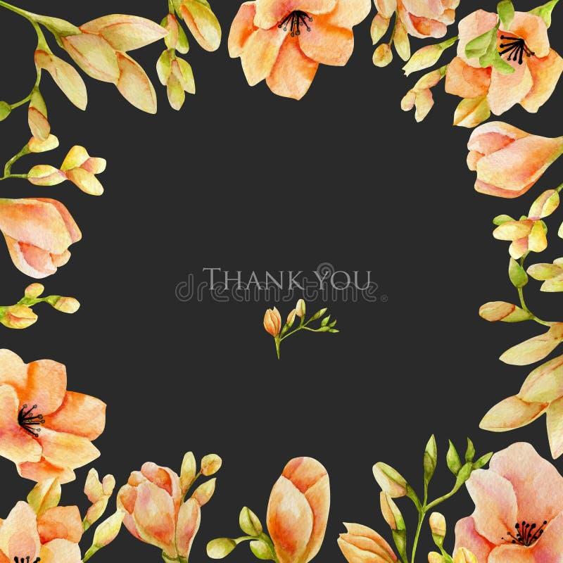 Molde do cartão das flores da frésia do pêssego da aquarela foto de stock