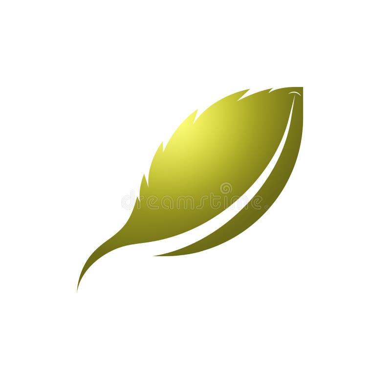Molde do logotipo da folha com amarelo dourado ilustração royalty free