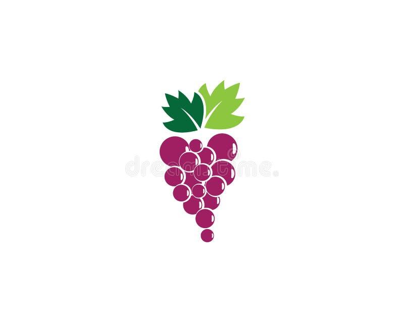 Molde do logotipo da uva ilustração stock
