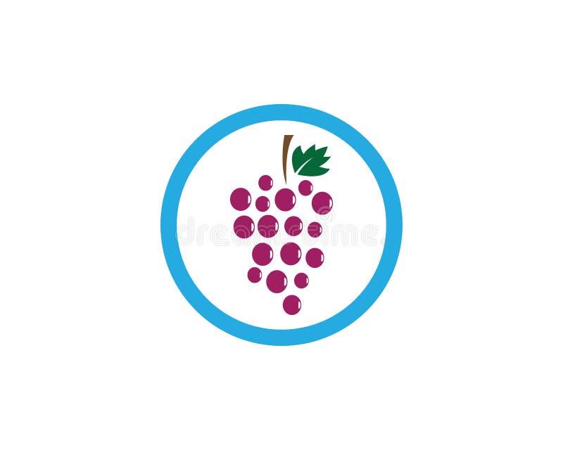 Molde do logotipo da uva ilustração do vetor