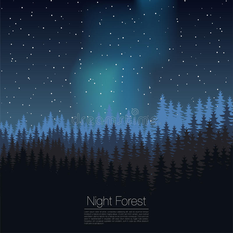 Molde do projeto da floresta da noite Vetor Molde conífero da silhueta da floresta Ilustração das madeiras ilustração royalty free