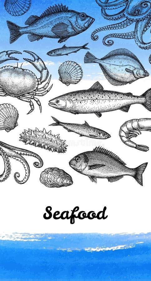 Molde do projeto do menu do marisco ilustração royalty free