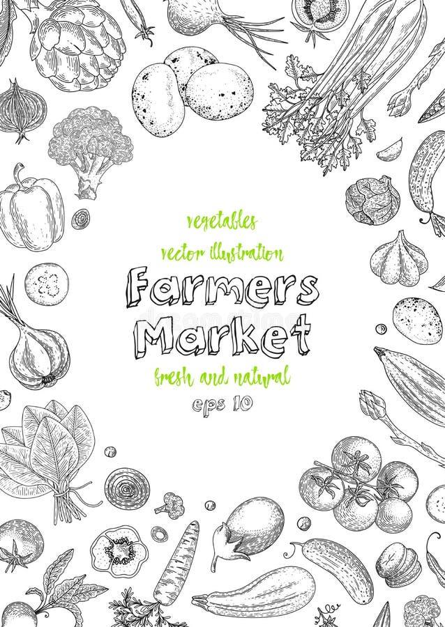 Molde do projeto do menu do mercado dos fazendeiros Fundo do vintage do vegetariano com os produtos orgânicos naturais Detalhado  ilustração royalty free