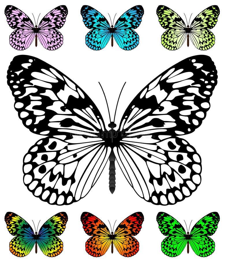 Molde do vetor da borboleta ilustração stock