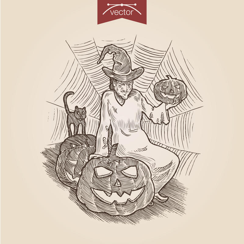 Molde handdrawn do estilo da gravura da abóbora do gato da bruxa de Dia das Bruxas ilustração do vetor