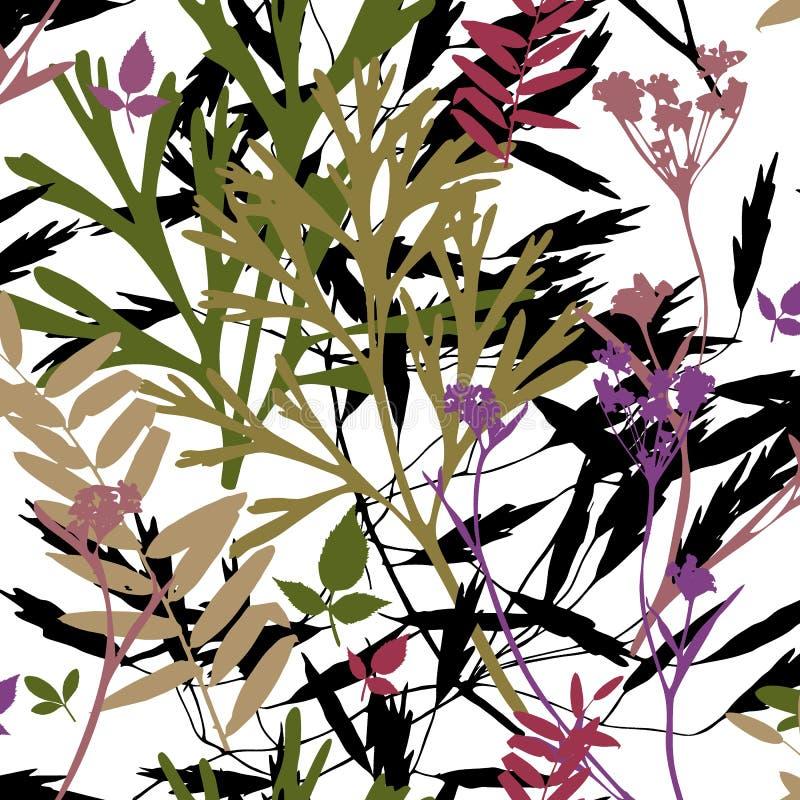 molde Herb?rio com flores selvagens, ramos, folhas Fundo bot?nico no branco Contraste brilhante foto de stock royalty free