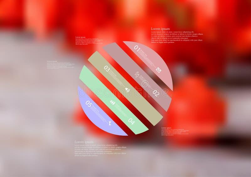 Molde infographic da ilustração com o oblíquo do círculo dividido a cinco peças autônomas da cor ilustração royalty free