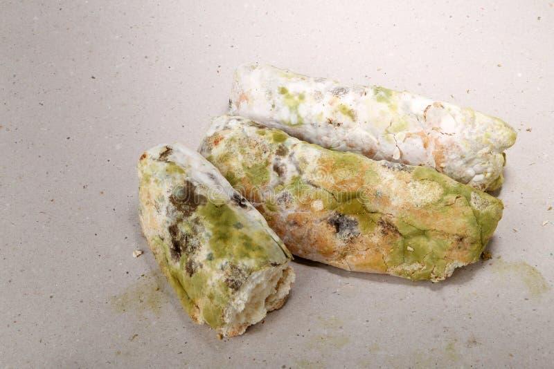 Molde no pão O melhor antes da data tem expirado há muito tempo com este alimento mofado Espaço para o texto imagens de stock