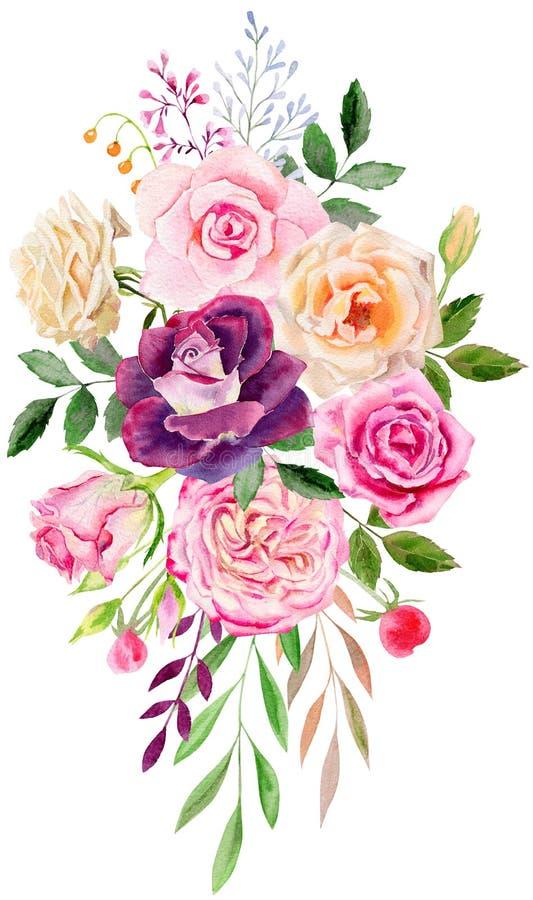 Molde pintado à mão do clipart do modelo da aquarela das rosas ilustração do vetor