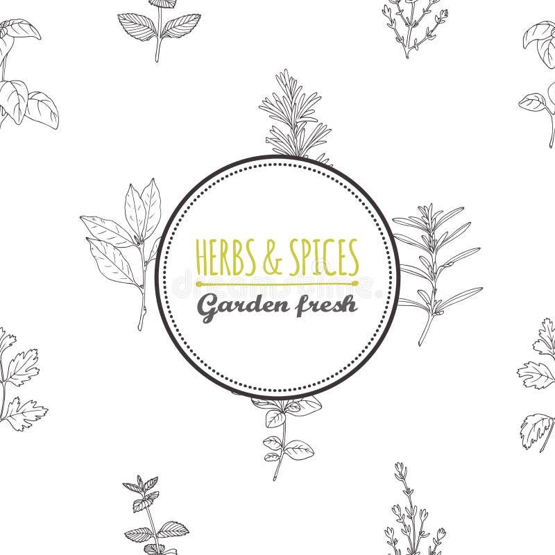 Molde redondo da etiqueta no teste padrão sem emenda com ervas picantes ilustração stock