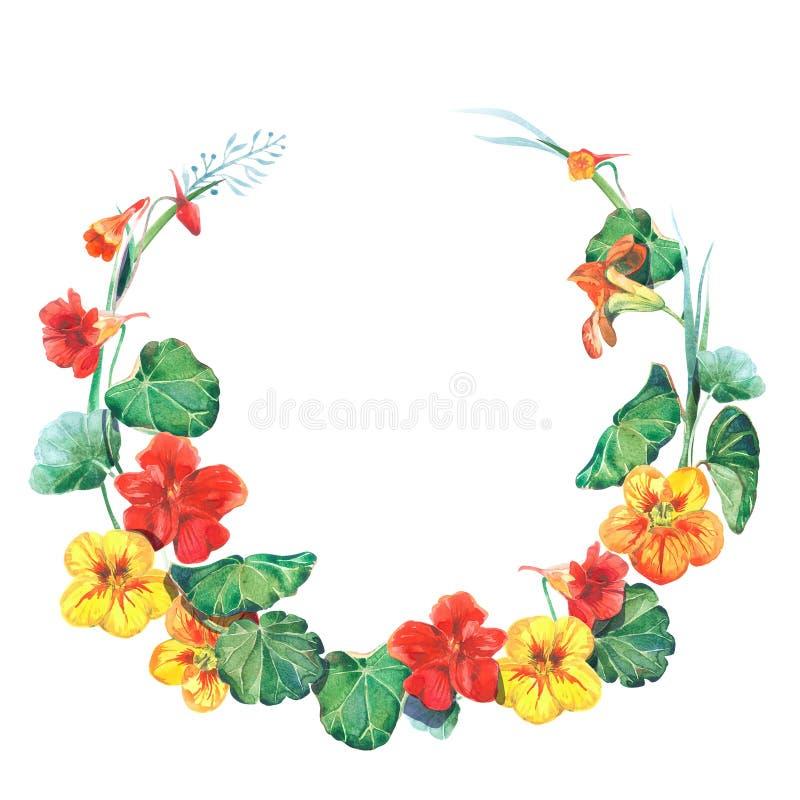 Molde redondo do quadro da aquarela com flores da chagas imagens de stock