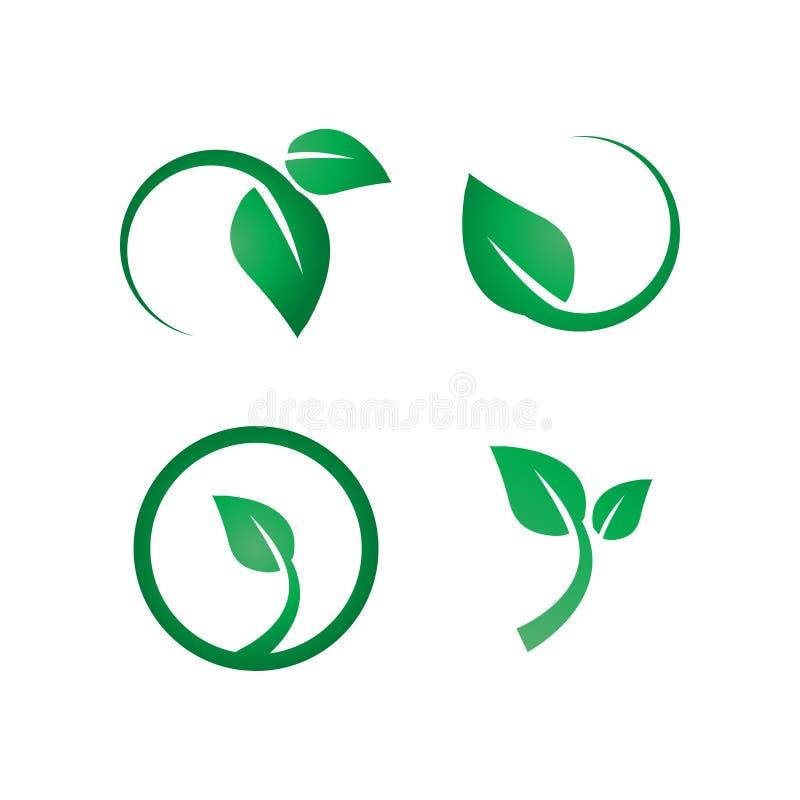 Molde verde do projeto do ícone do logotipo da folha ilustração royalty free