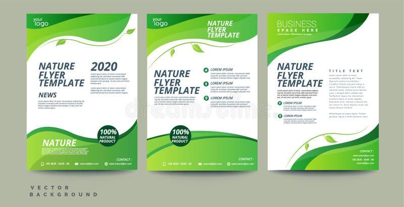 Molde verde do projeto do inseto do folheto do informe anual ilustração royalty free