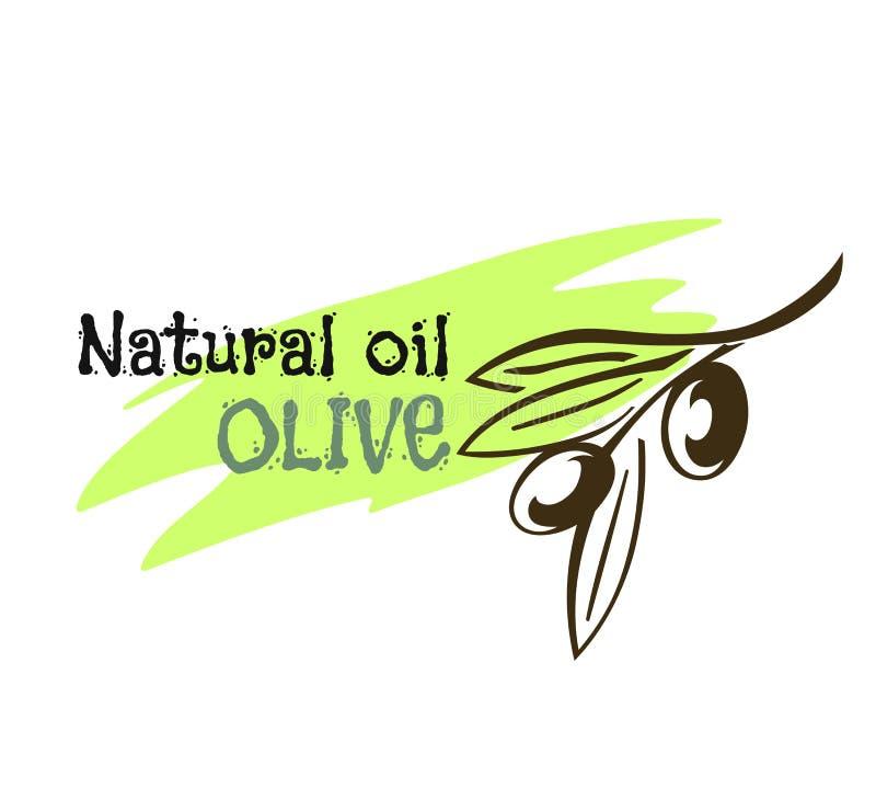 Moldes da etiqueta da garrafa e do produto de azeite Vector ícones do ramo de azeitonas verdes e do óleo orgânico natural extrema ilustração royalty free