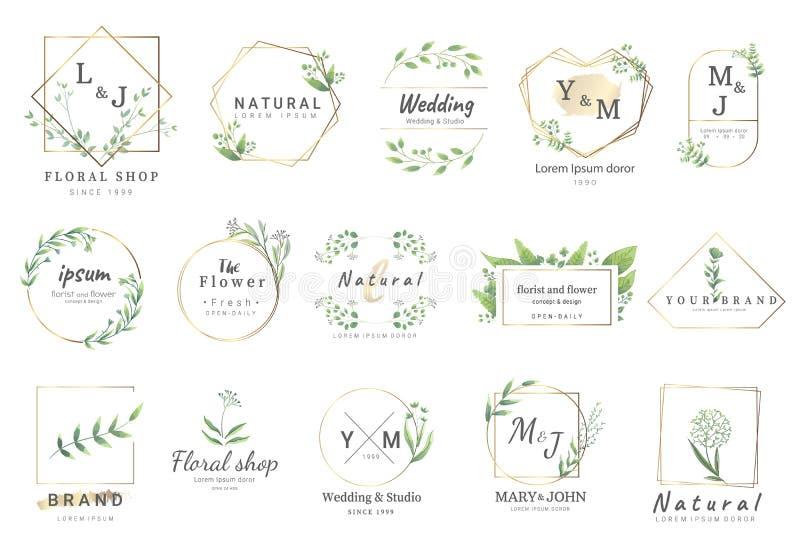 Moldes florais superiores do logotipo para o casamento, logotipo, bandeira, crach?, impress?o, produto, pacote Vetor ilustração do vetor