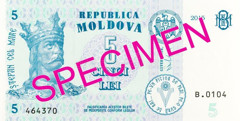 5 moldovan leu banknote obverse specimen. Single 5 moldovan leu banknote obverse specimen royalty free stock photos
