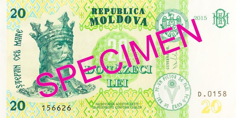 20 moldovan leu banknote obverse specimen. Single 20 moldovan leu banknote obverse specimen royalty free stock images