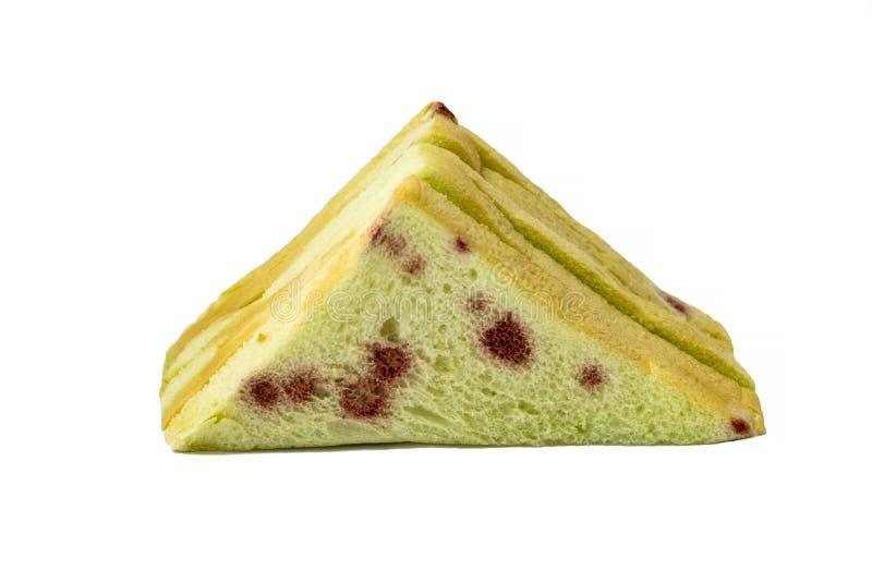 Moldy τοξική ουσία τροφίμων σάντουιτς στοκ εικόνα