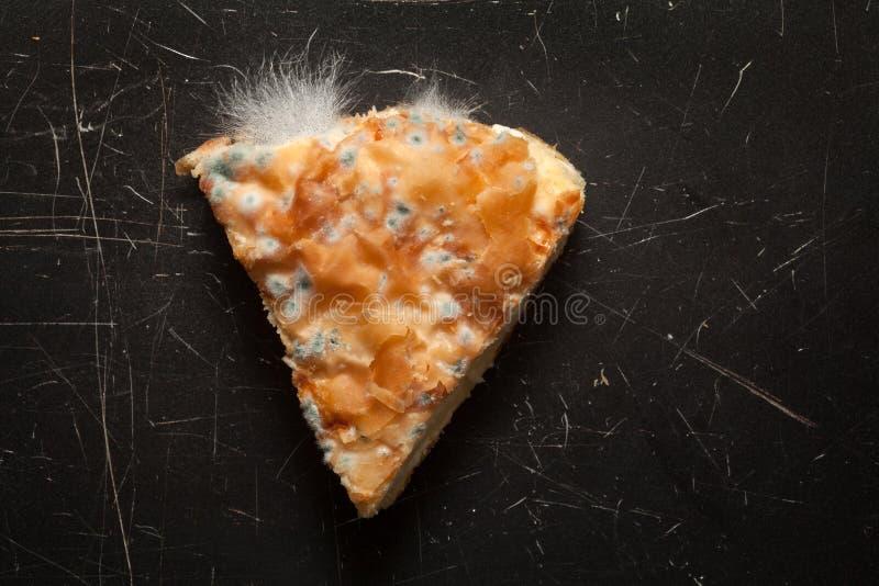 Moldy пирог сыра стоковые фотографии rf