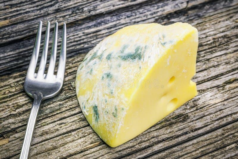 Moldy сыр на деревянных досках стоковое изображение rf