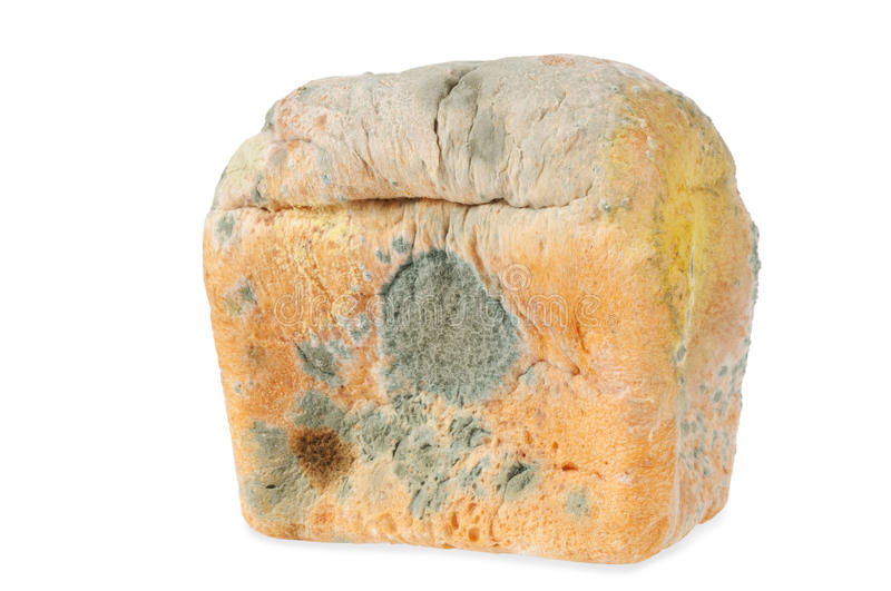 Download Moldy Bread. Isolated Royalty Free Stock Photos - Image: 17459938