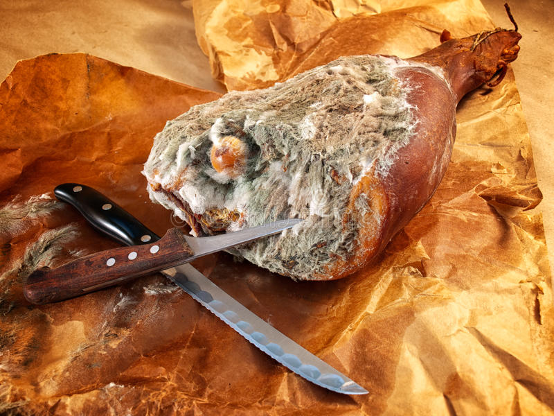 Download Moldy Ham Royalty Free Stock Image - Image: 27412276
