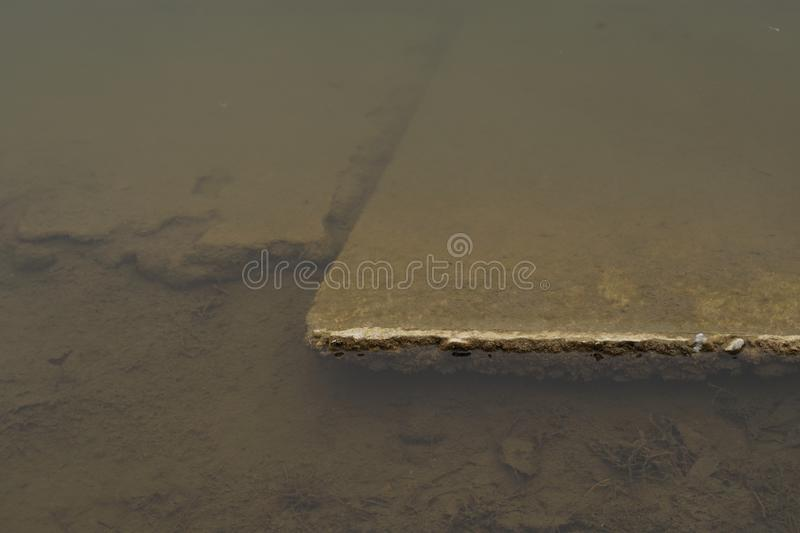 Moldy pond in the park. In winter. Cement covered with dirt and rotten grass particles stock photography