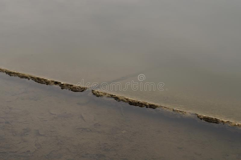 Moldy pond in the park. In winter. Cement covered with dirt and rotten grass particles stock photo