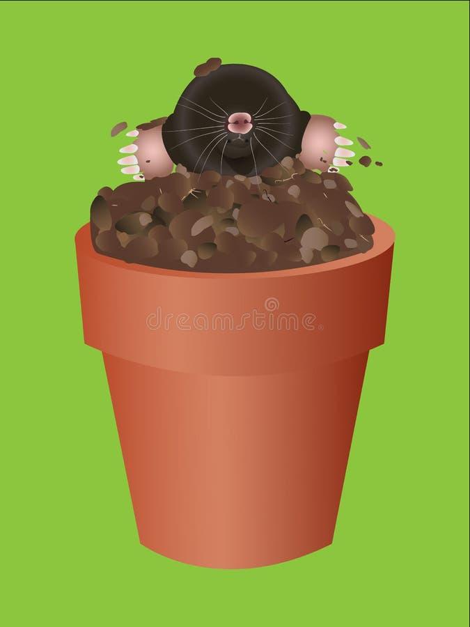 Mole. It is mole in flowerpot vector illustration
