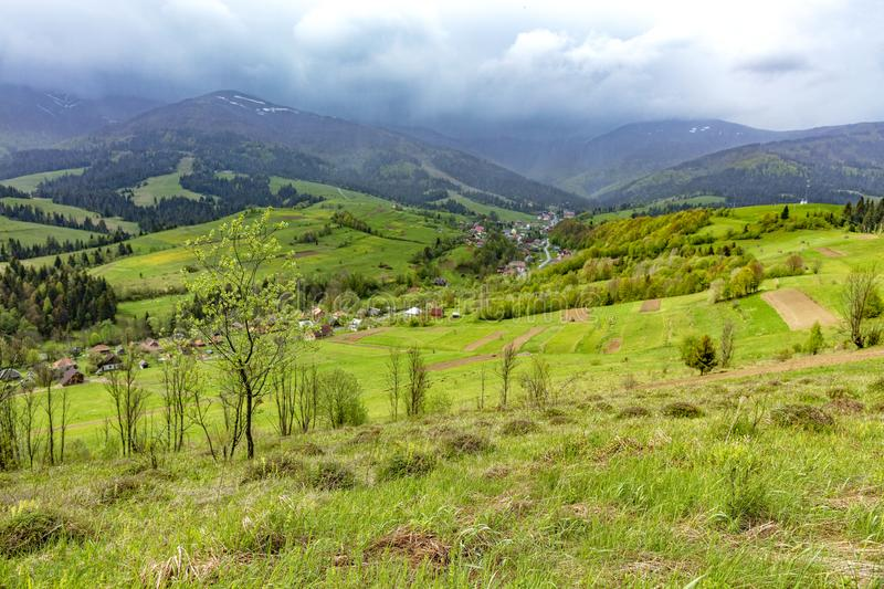 The mountain slope is covered with thick green grass against the backdrop of the picturesque landscape of the Carpathian Mountains royalty free stock photo