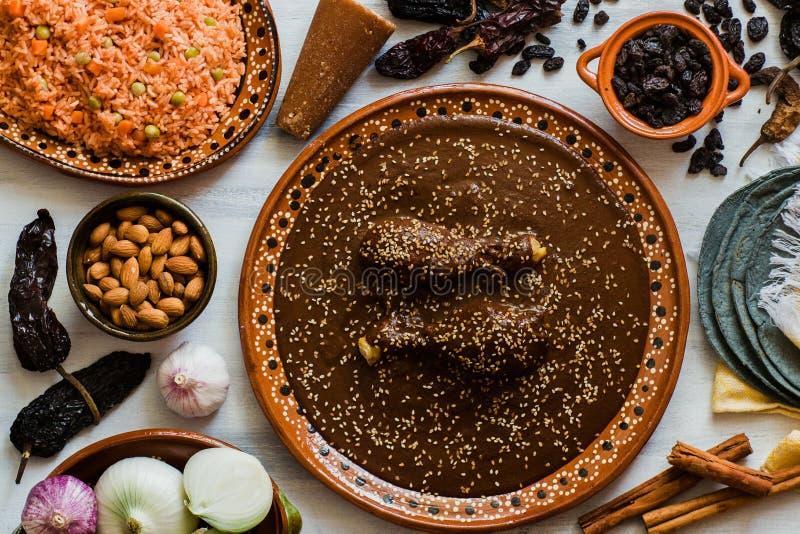 Mole Mexicano, Poblanomolebestandteile, mexikanische würzige Nahrung traditionell in Mexiko lizenzfreies stockbild
